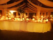 Bancone illuminato per il buffet di nozze - ELE light