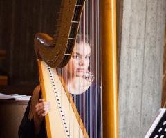 The Wedding Harp