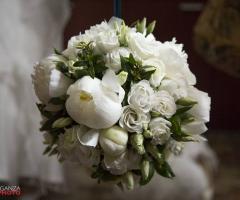 Wedding & Events by Renata Travel
