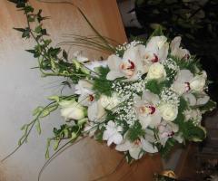 Profumi di fiori