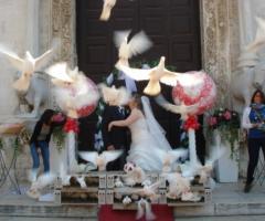 Aspettando il sì - Wedding Planner