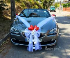 Il Punto Esclamativo - Addobbi per l'auto del matrimonio