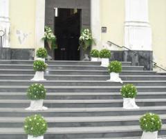 Addobbi con alberelli bassi verdi per l'esterno della chiesa