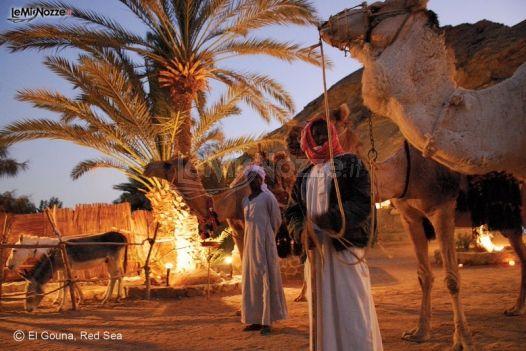Matrimonio In Egitto : Viaggio di nozze in egitto my way foto