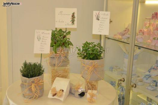 Tableau Matrimonio Tema Erbe Aromatiche : Idee tableau mariage con erbe aromatica organizzazione