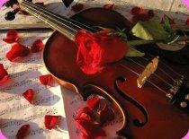 Violino per la serenata alla sposa