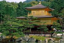 Visita al Tempio Kinkaku-ji a Kioto durante la luna di miele