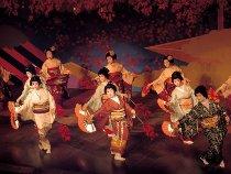 Spettacolo di danza delle geishe a Kioto