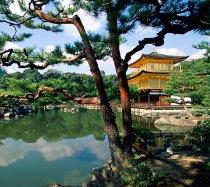 Tipica costruzione giapponese dove poter alloggiare durante il viaggio di nozze