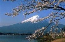 Escursione sul Lake Ashi nella provincia di Hakone
