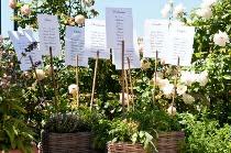 Matrimonio country chic - Porta piante aromatiche ...