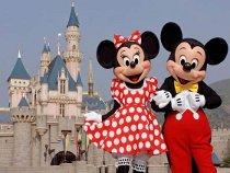 Giornata a Disneyland durante il viaggio di nozze