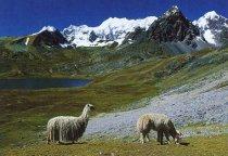 Escursione sulle Ande durante la Luna di Miele