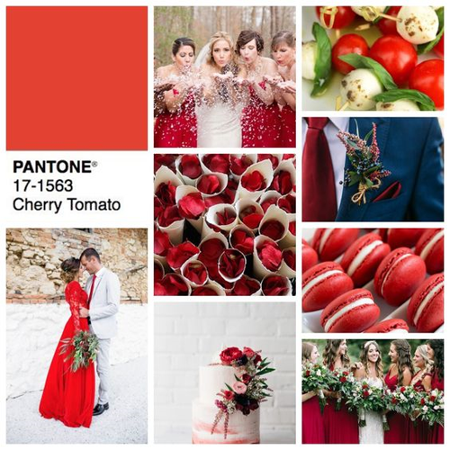 Palette color Pantone Cherry Tomato