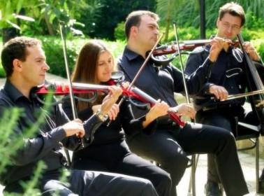 Musica da matrimonio: quartetto d'archi