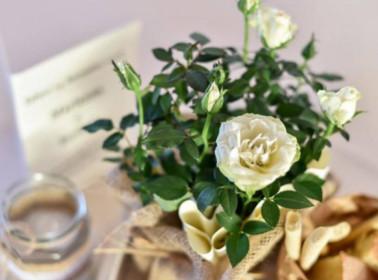 Organizzare un matrimonio in autunno
