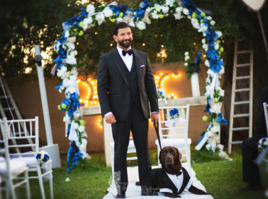 reportage matrimonio cane