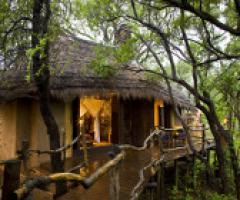 Sudafrica e Seychelles: un viaggio di nozze indimenticabile