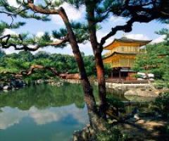 Viaggio di nozze in Giappone e Nuova Caledonia