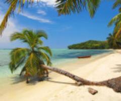 Viaggio di nozze in Madagascar: un'isola, un continente