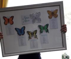 Sara Carloni Studio - Tableau farfalle
