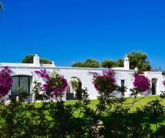 Masseria Eccellenza - Una vista della location dai giardini