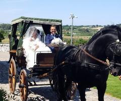 Masseria Luco - Gli sposi in carrozza