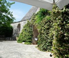 Masseria del Gelso Antico - Il profumo del verde