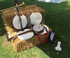 Metamorphosis Wedding Band - Gli strumenti musicali