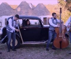 Metamorphosis Wedding Band - Dixie