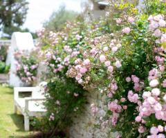 Villa Cenci - Giardino fiorito