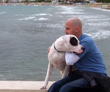 Dog Sitter Milano