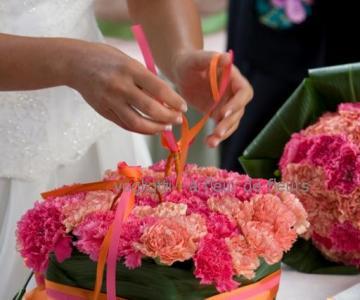 Vogliotti - à fleur de fleurs