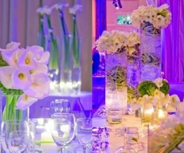 Domus Talenti - Wedding Planner