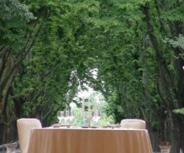 Miele & Peperoncino - Wedding & Event Planner