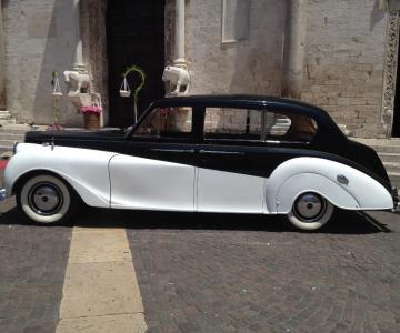 Murgia Museum - Auto d'epoca
