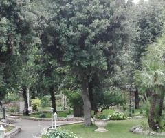 Villa Torrequadra - Parco Secolare della Villa