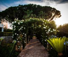 Relais il Santissimo -  La fioritura