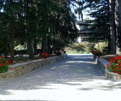 Villa Fabio - Il viale di ingresso visto dall'interno