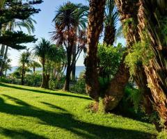 Royal Hotel Sanremo - Il giardino