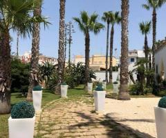 Oasi  Quattro Colonne - Il viale nei giardini