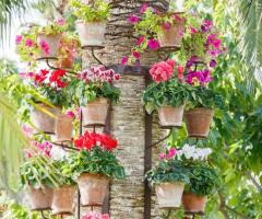 Parco dei Principi Ricevimenti - I fiori