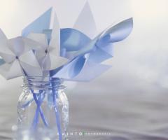 Maria Mayer Events - Battesimo bambino