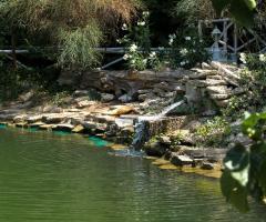Parco con laghetto della location di nozze