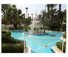 Parco dei Principi Ricevimenti - La fontana