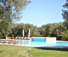 Tenuta Monacelli - La piscina vista da lontano