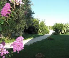 Masseria Montepaolo - Il parco circostante