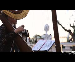 Musica di arpa per il matrimonio