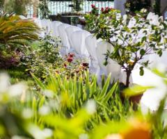 Il giardino di Villa Lina - Il  giardino