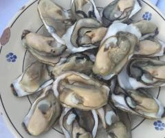 Masseria Santa Teresa -  Antipasti di pesce